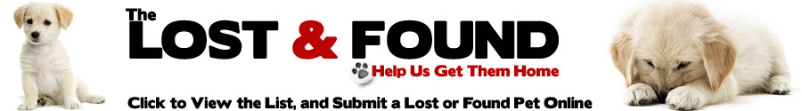 Lost & Found Pets Banner